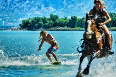 Tohle prostě chceš aneb surfovačka za koníkem